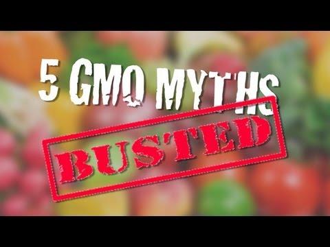 5 gmo myths busted 5 GMO Myths Busted (VIDEO)
