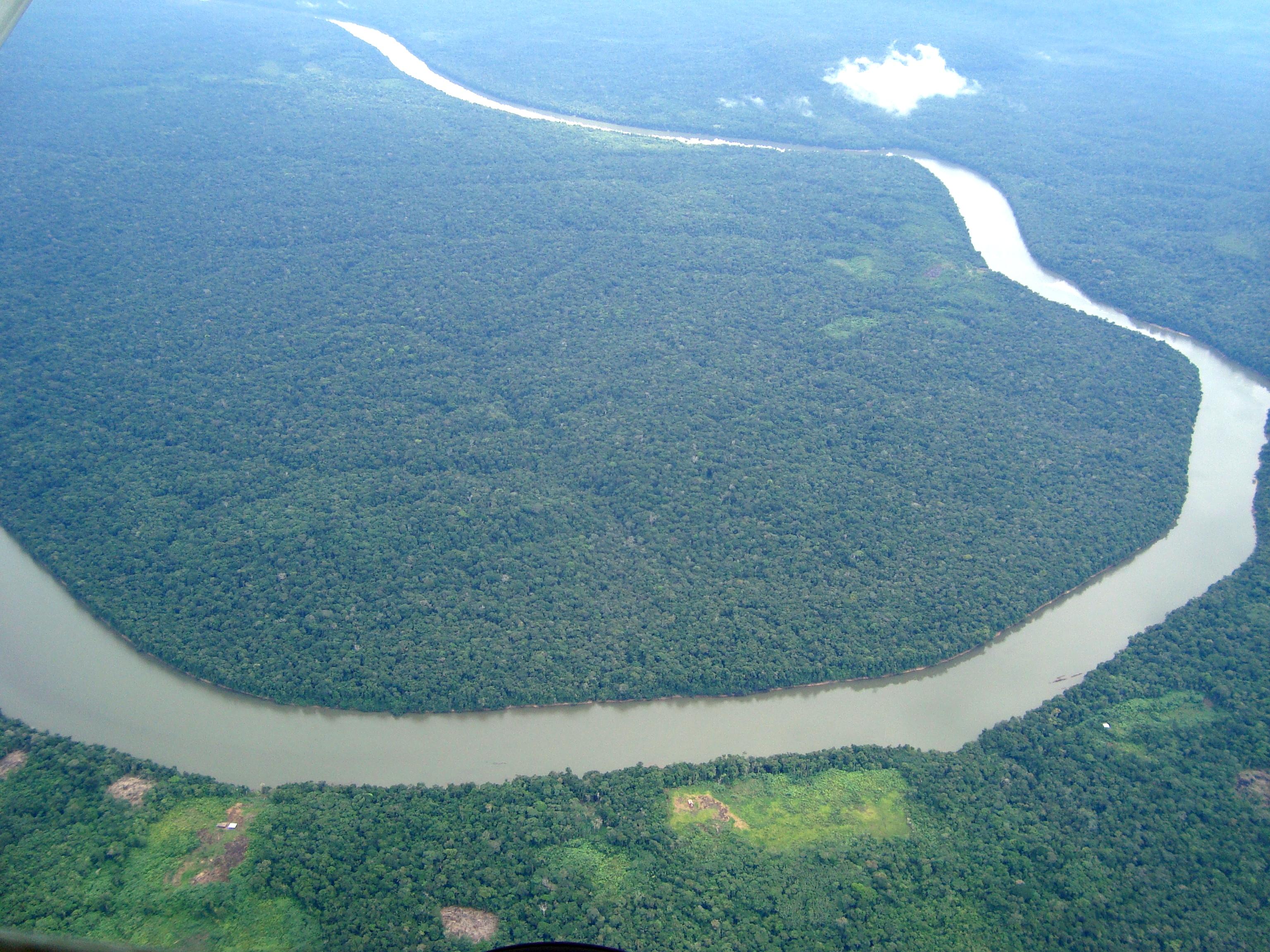 amazon rainforest 2 Monsanto groups up with World Wildlife Fund to change Amazon into Big GMO plantation