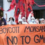 Monsanto has a long history of bullying, deceiving and exploiting farmers and governments